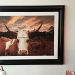 Odd cattle art in room