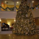 Inside Lobby Cmas Tree Covered with Angels, Piano in Back
