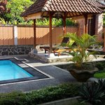 Green House Pool & Garden Area