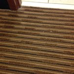 More gross unclean carpet