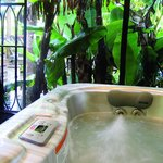 Our Garden Jacuzzi in rainforest