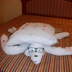 Towel Turtle