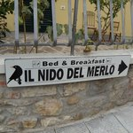 Photo of Nido del merlo