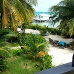 Belize Tradewinds Paradise Villas照片