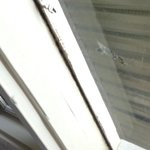 Mould covered window sill