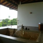 Plunge pool overlooking the grounds and the beach