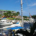 Holiday Inn Key Largo resmi