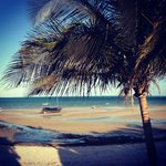Foto de Baobab Beach Backpackers