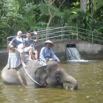 Elephant Safari Park & Lodge resmi