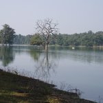 Pench River view
