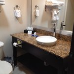 BEST WESTERN PLUS Fort Lauderdale Airport South Inn & Suitesの写真
