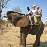 Photo taken during our elephant ride -- orphaned, rescued 11-year-old elephant