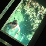 Snorkeling under my hut. Seen through the FLOOR  window!