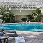 Louisville Airport Hotel Indoor/Outdoor Pool