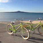 Cycle Auckland