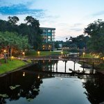 Photo of Sawgrass Marriott Golf Resort & Spa