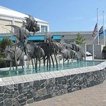Fort Fisher Aquarium Packages available at Holiday Inn Wilmington