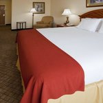 Φωτογραφία: Holiday Inn Express Hotel & Suites Arcadia