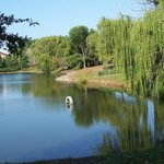 Our Serenity Pond features a 1/3 mile paved walking trail