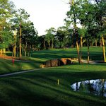 Enjoy Houston's most beautiful golf courses