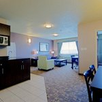 Φωτογραφία: Holiday Inn Express & Suites Dawson Creek