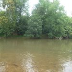 The Monocacy River.