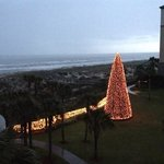 Beautiful holiday decor including a beach side tree