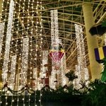 Gaylord Opryland Resort & Convention Center resmi