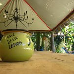Foto de Little Lemon Tree