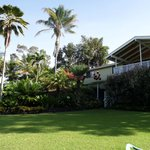 Billede af Areca Palms Estate Bed and Breakfast