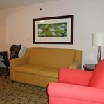 Foto de Hilton Garden Inn Fort Worth/Fossil Creek