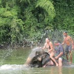 Elephant bath - we got the bath!