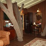 Our Room - Treehouse