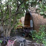 Foto Omah Gili Accomodation