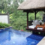 Private pool & pagoda overlooking forest