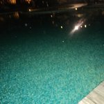 Crystal clear pool with the fact withstanding that mariott goa is 2nd oldest 5 star property
