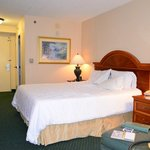 Photo de Hilton Garden Inn Sarasota - Bradenton Airport