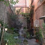 El patio 77, first eco-friendly B&B in Mexico Cityの写真