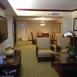 Φωτογραφία: Hyatt Regency Orlando International Airport