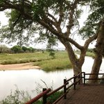 The Sabie River from the camp viewing platform
