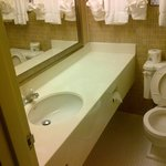BEST WESTERN PLUS Brant Park Inn & Conference Centre Foto