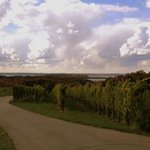 OId Mission Peninsula and Leelanau Peninsula wineries are an easy drive from the B&B