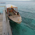 Transport to/from small boat harbour and Menjangan Island