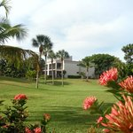 Attractive tropical landscaped views