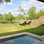 Sabi Sabi Earth Lodge照片