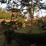Wildebeest Eco Camp resmi