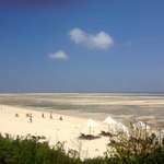 Фотография Ora Resort Watamu Bay