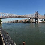 Queensboro Bridge (nearby)
