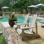 Foto de Thornybush Game Lodge