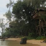 Tree House Bungalows의 사진